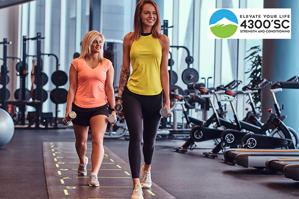 How to Choose a Great Health Club